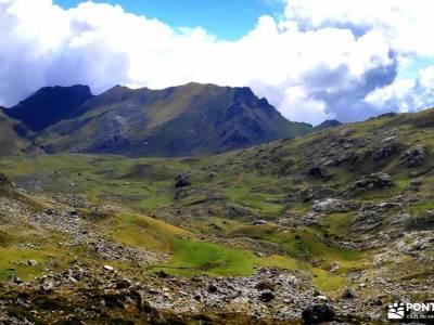 Corazón de Picos de Europa;tierra de campos aizkorri mesta cordillera cantabrica las batuecas flor